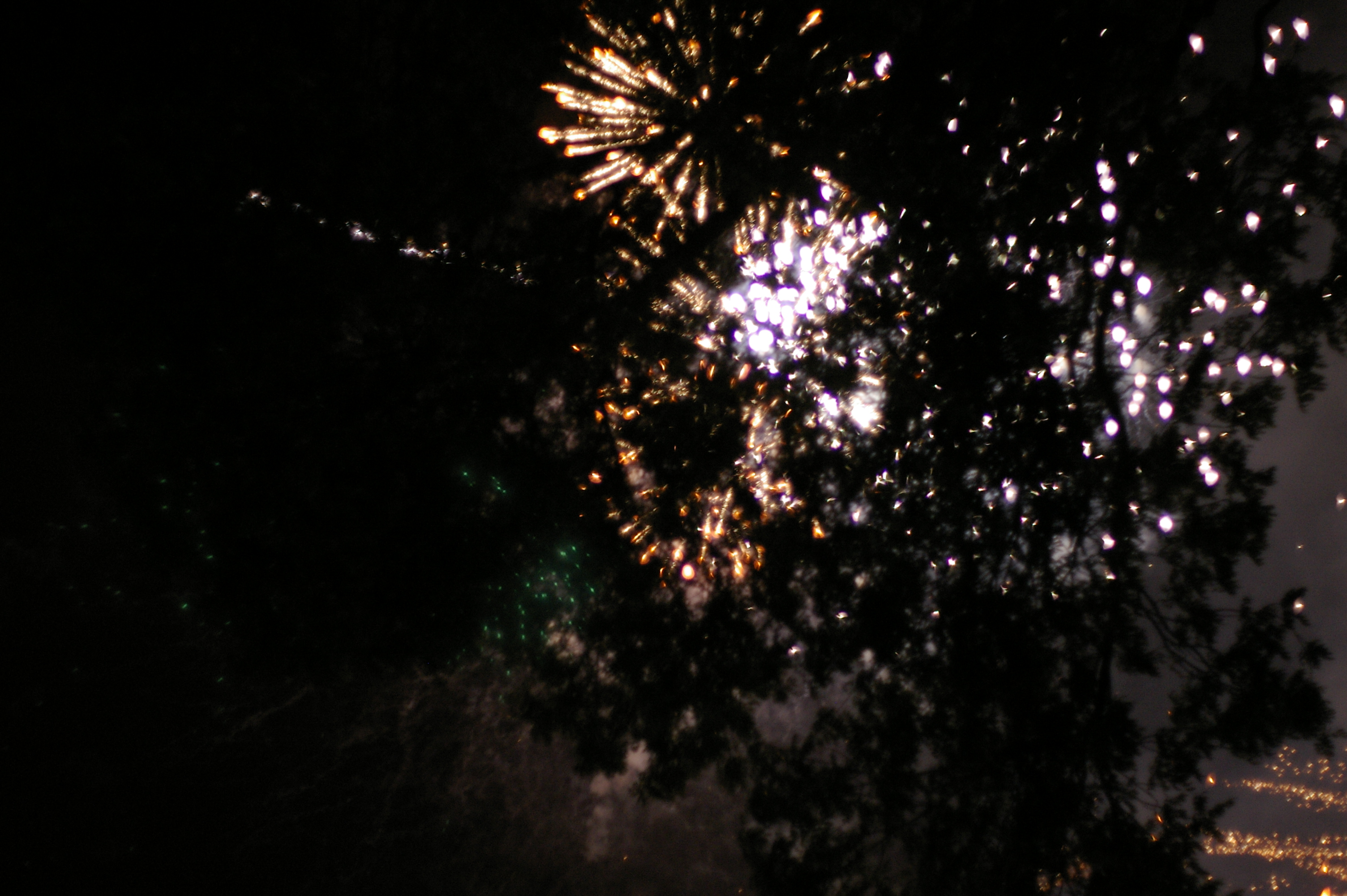 fireworks and trees abstract backdrop