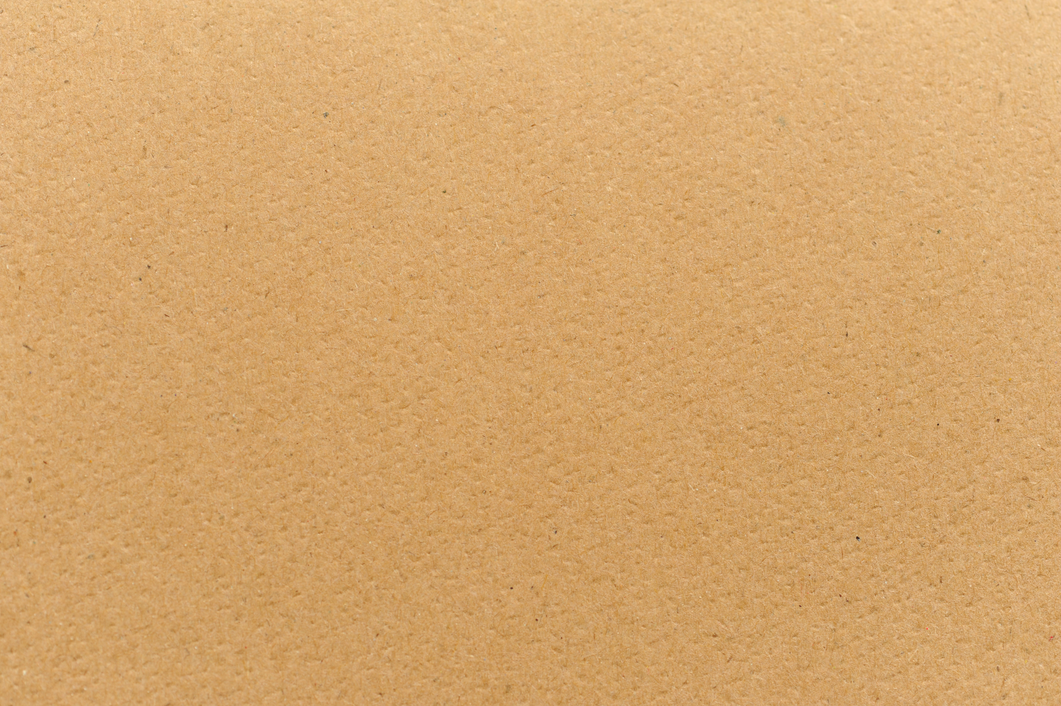 Full frame background texture of plain flat brown cardboard with copy space