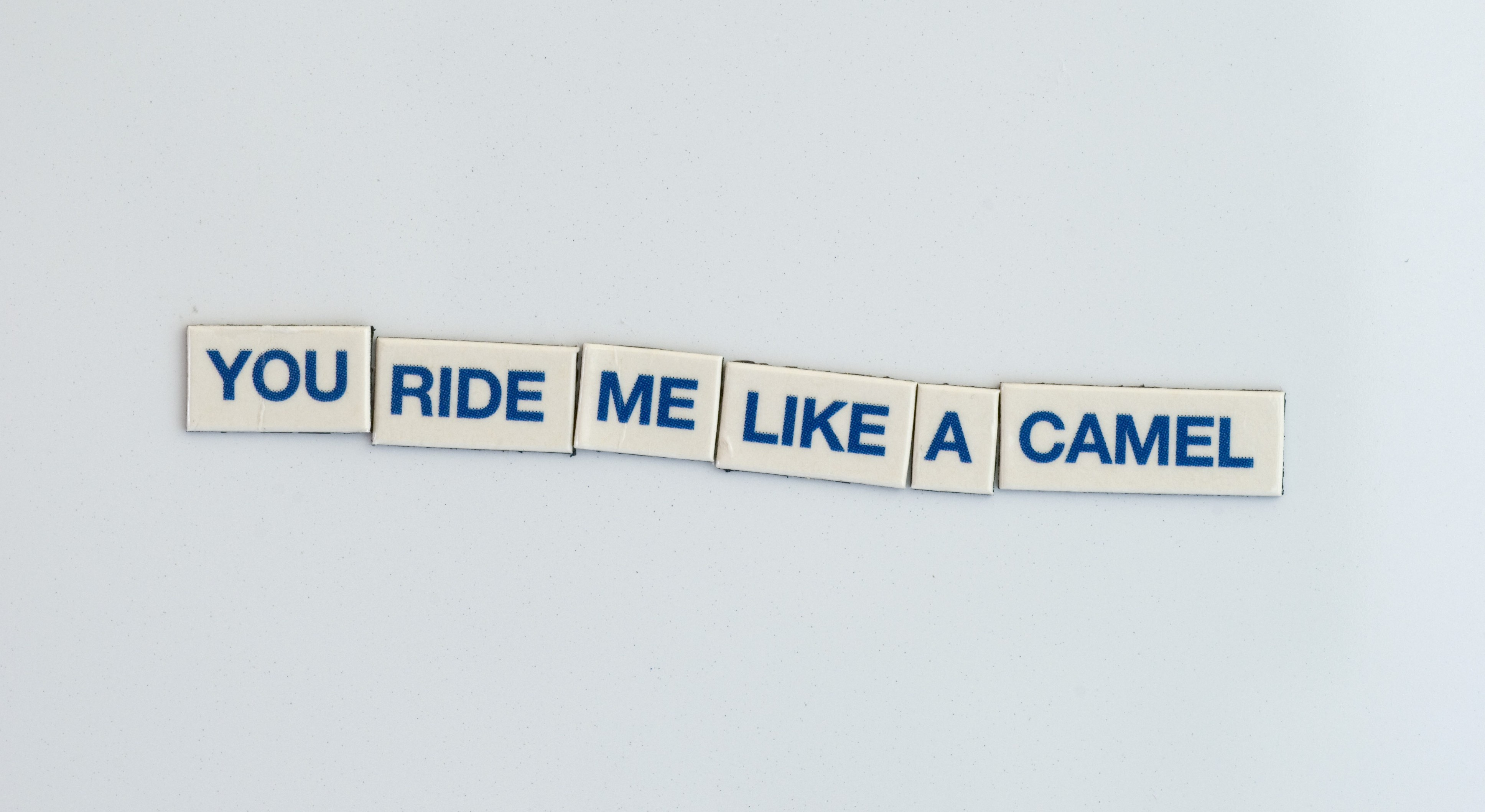 the stark rantings of the fridge magnet fairy - you ride me like a camel