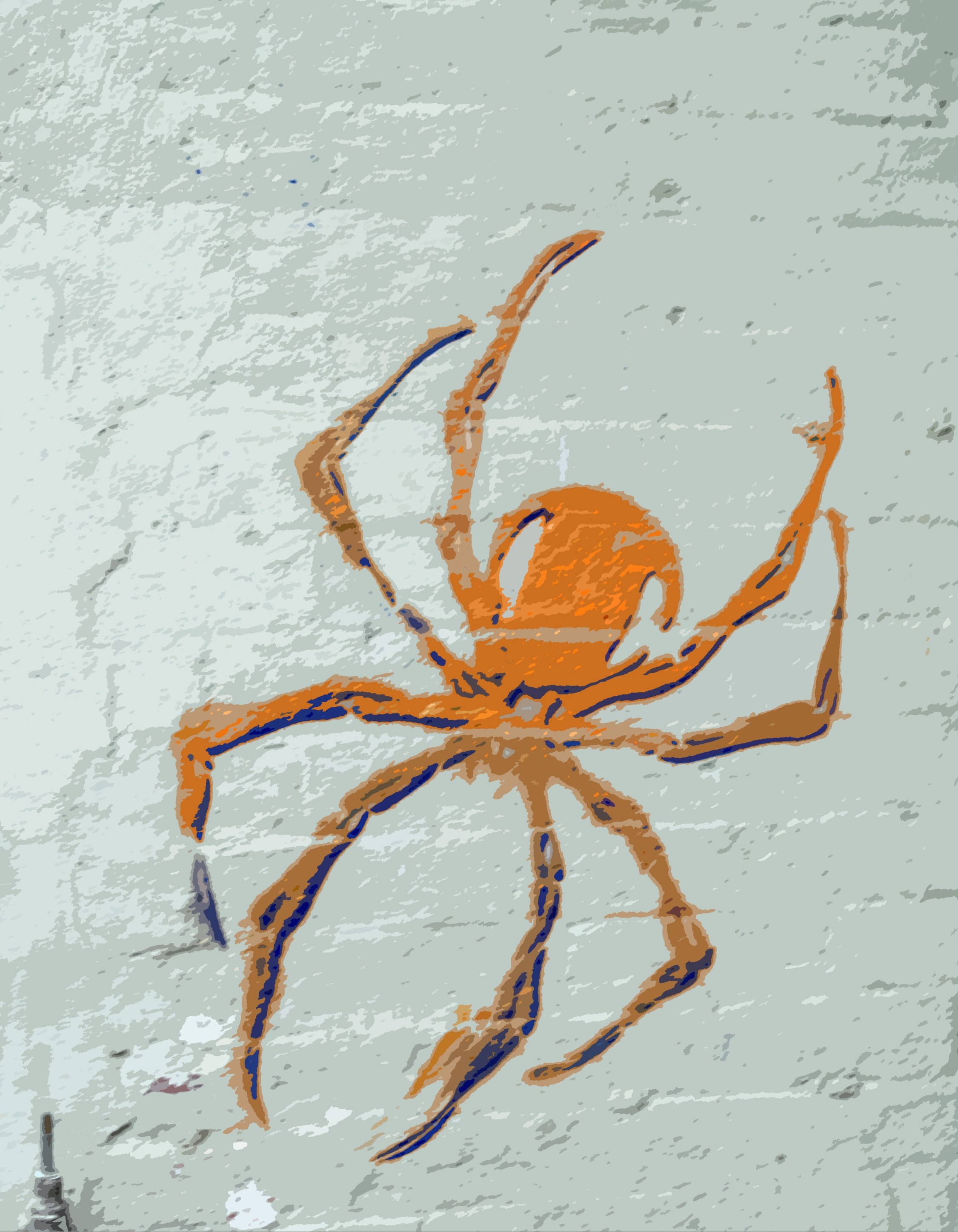 a spider symbol painted onto a wall