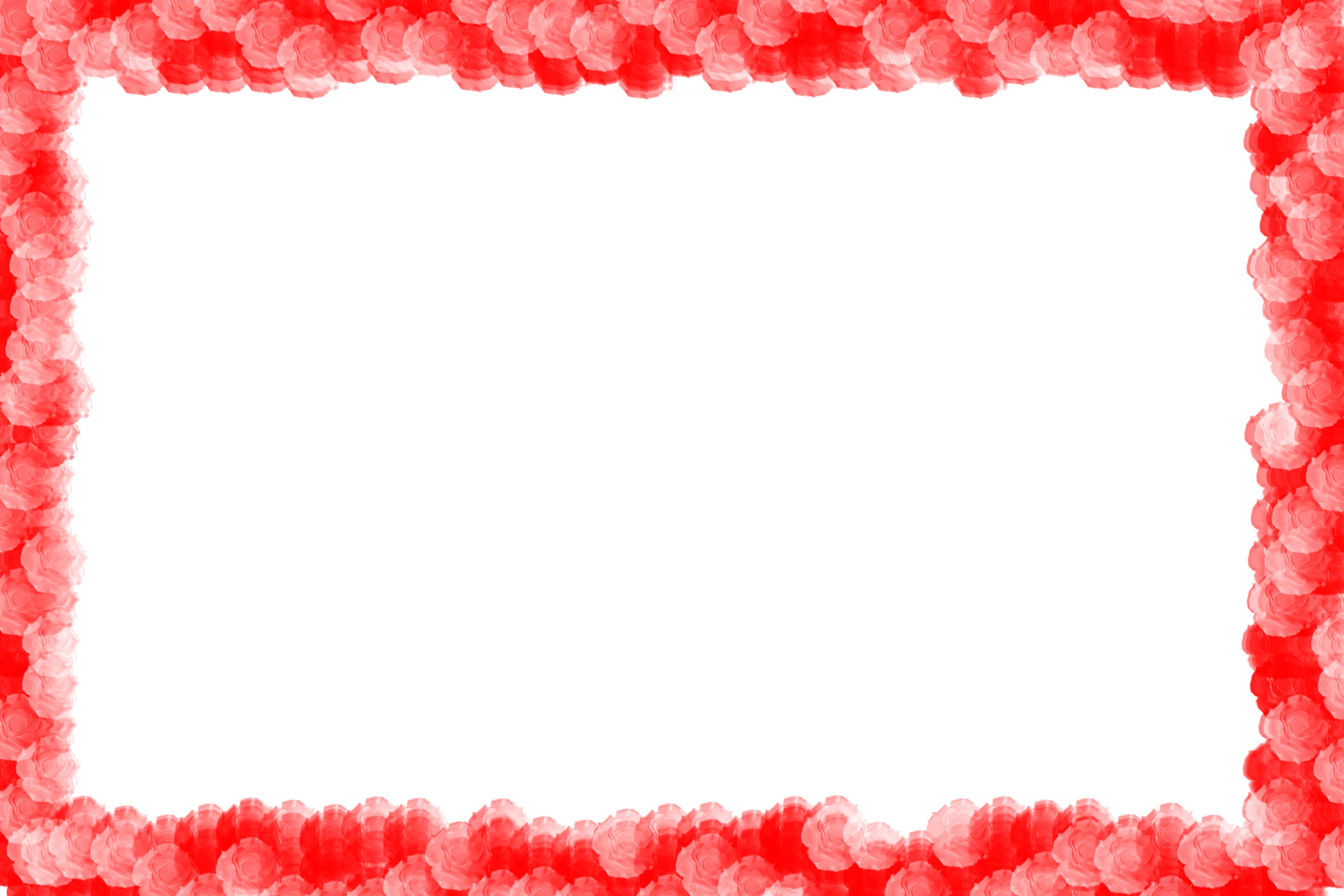 keywords rose red pink colours frame border edges endging red white