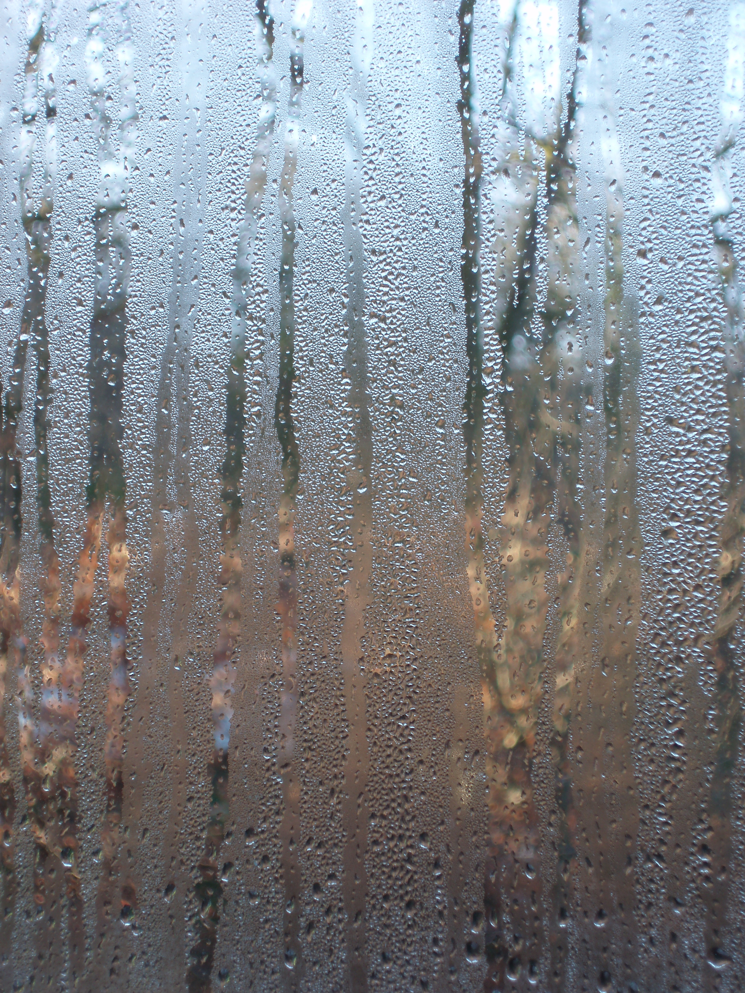 download steamy windows, drops of water running down a pane