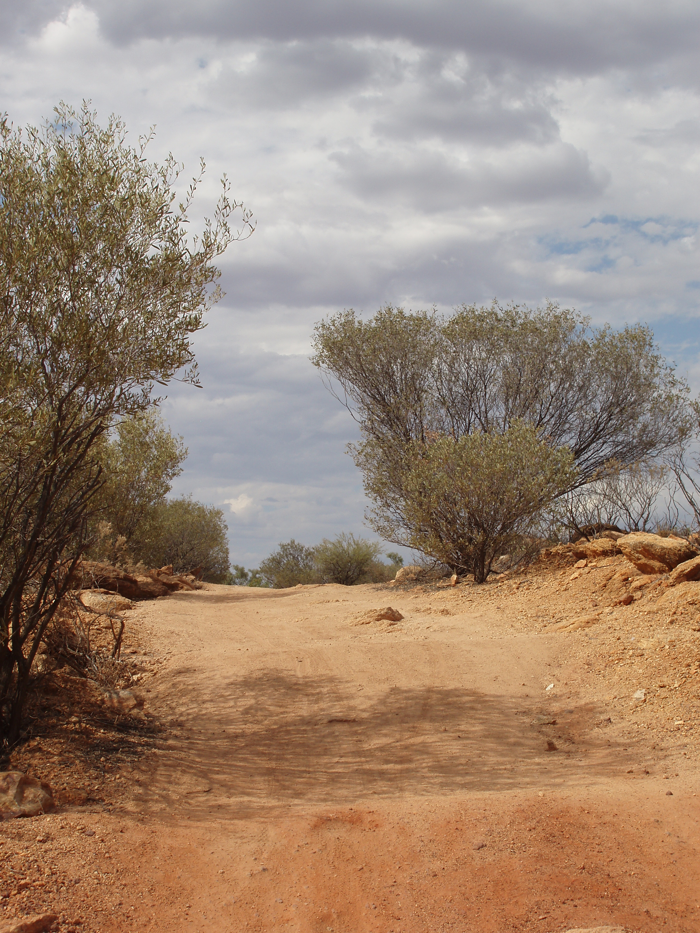 view along a dusty old dirt road in the outback