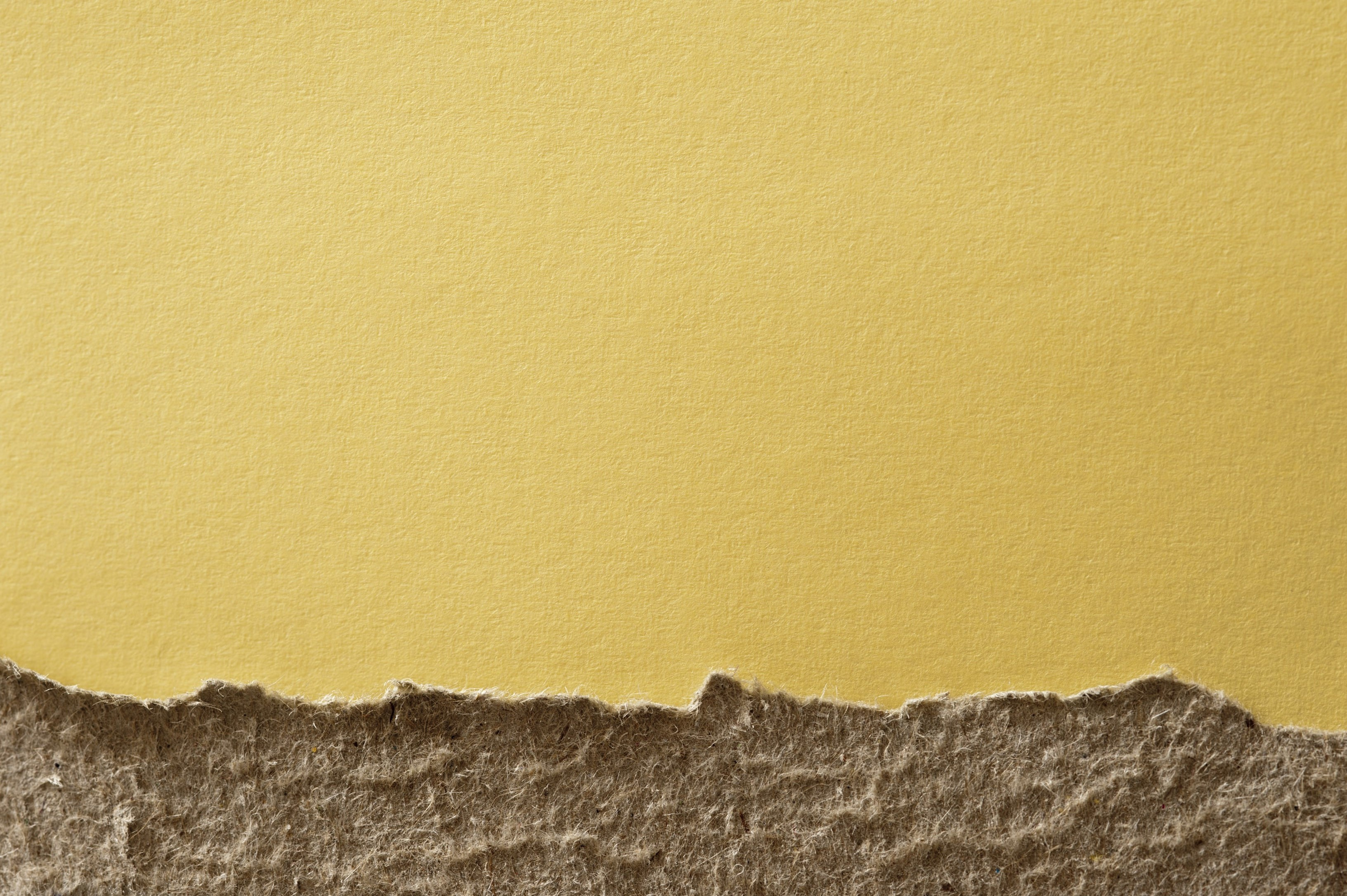 a textured yellow background with rough unbleached torn card border at the bottom