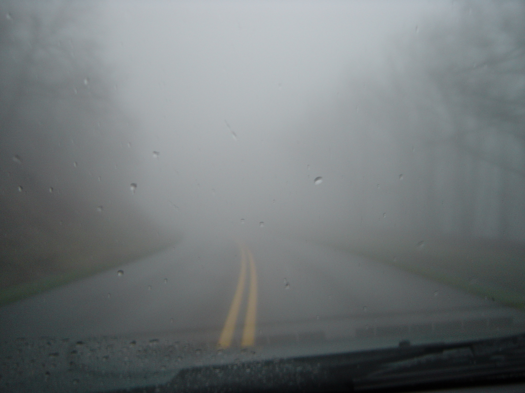 fog or mist on the road