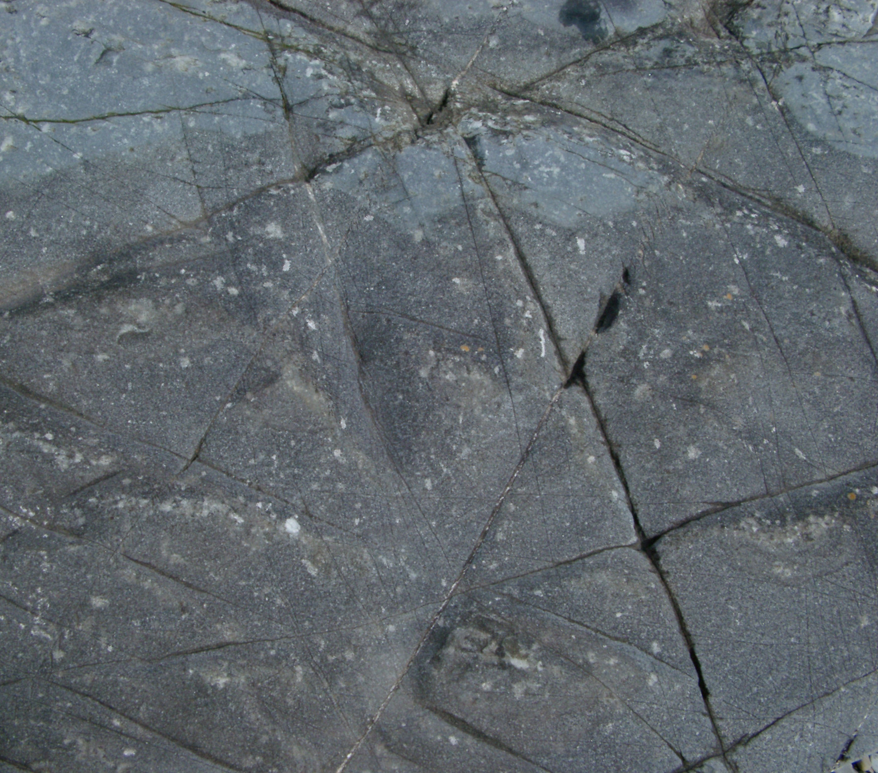 ice cracked pattern in a sheet of slate rock