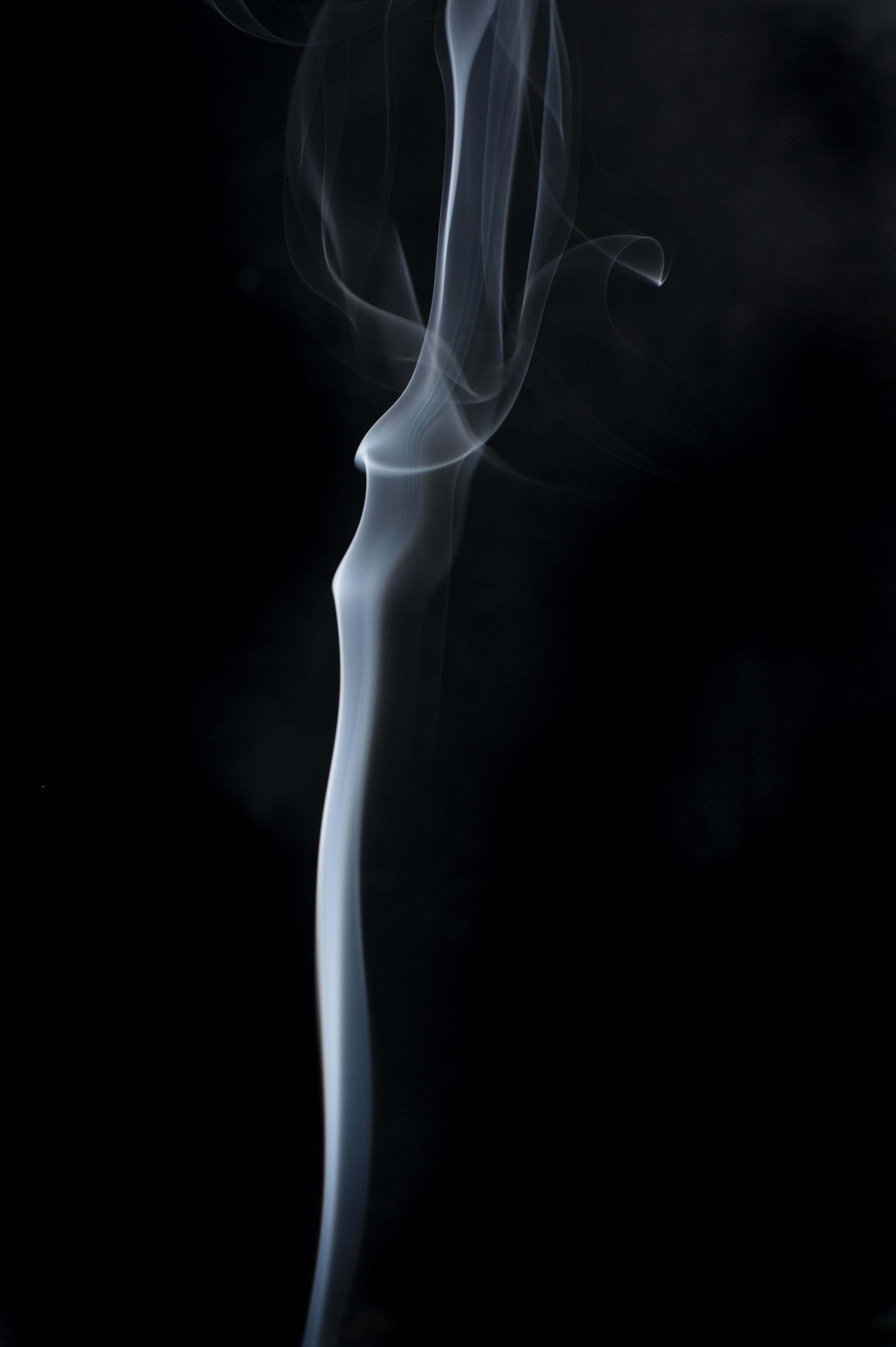 an organically twisting and bending line of smoke