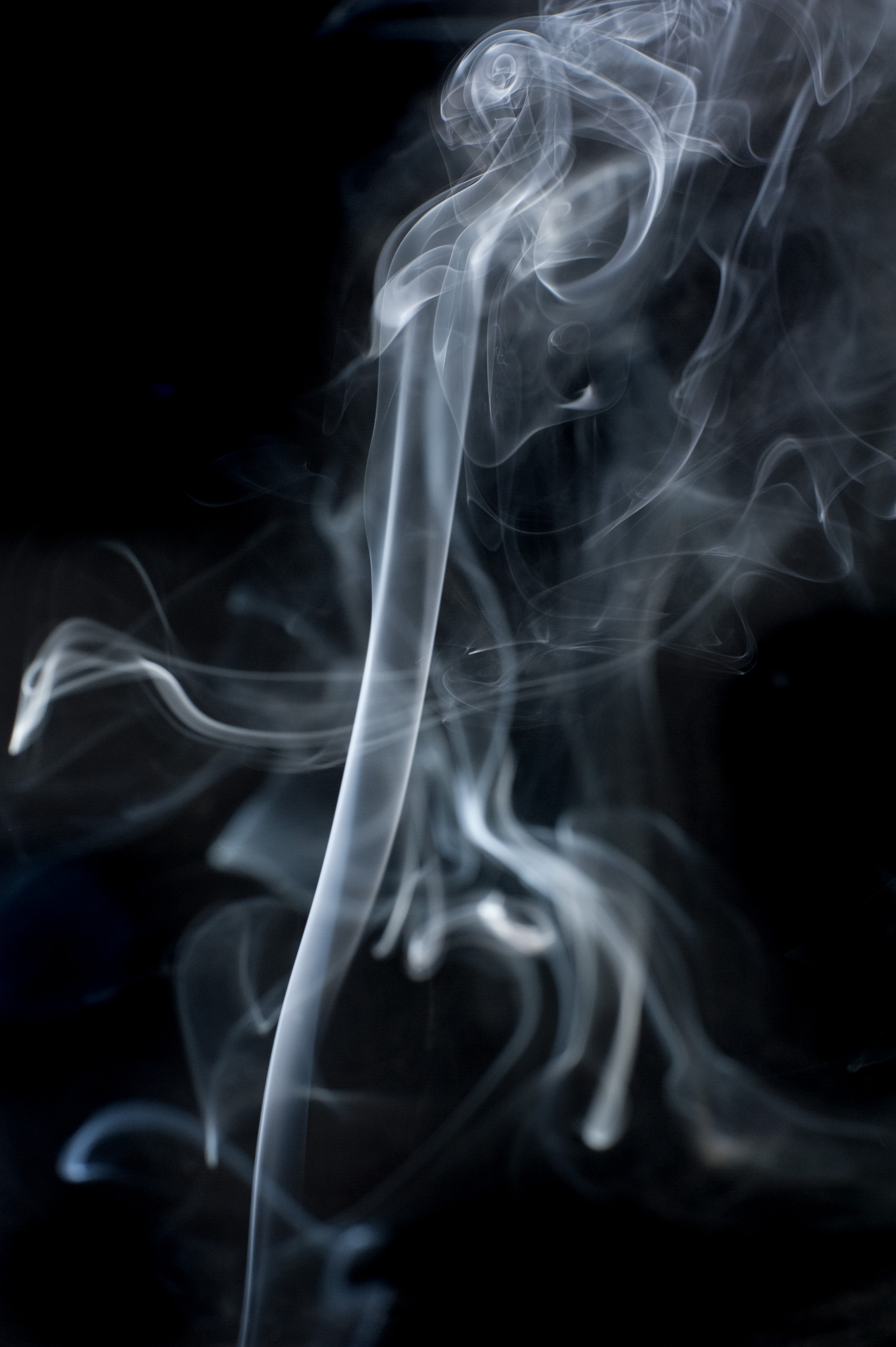 abstract vapours of smoke patterns on a black backdrop