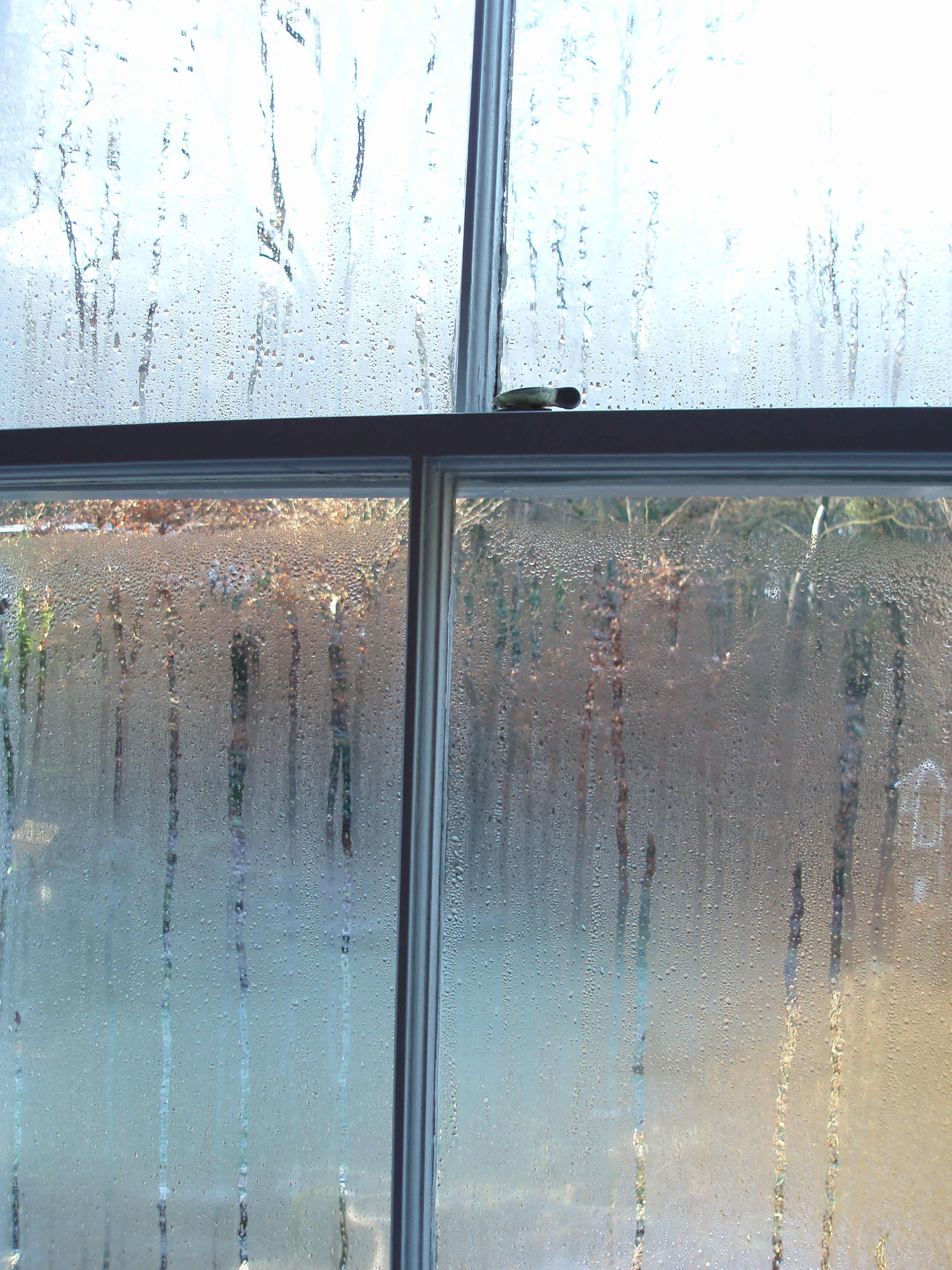 water on the inside of a sash window