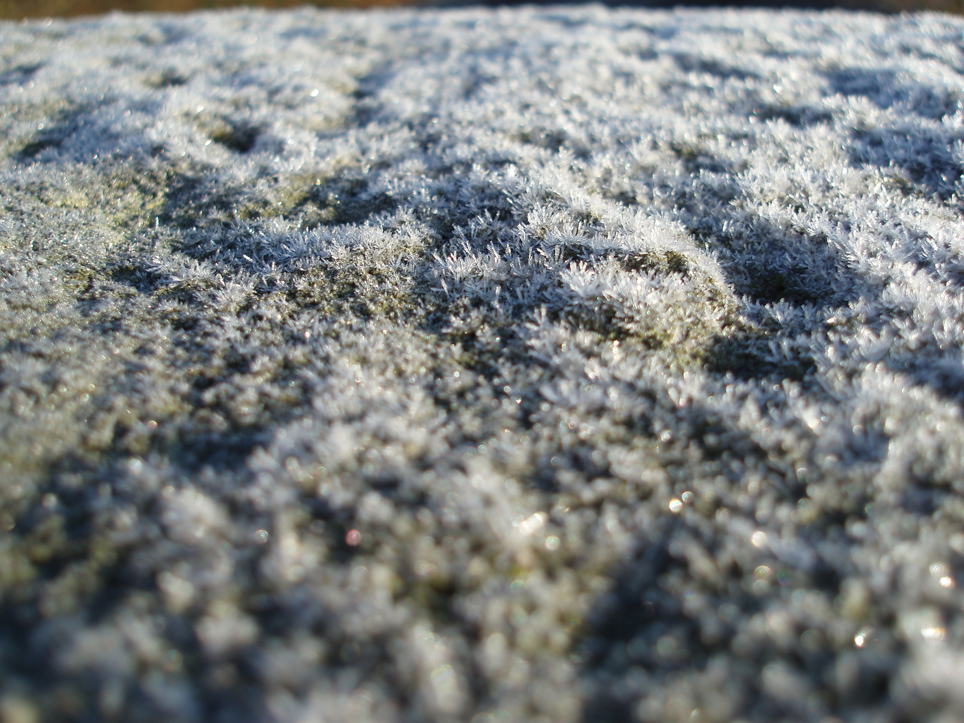 macro image of frost crystals growing on a stone wall