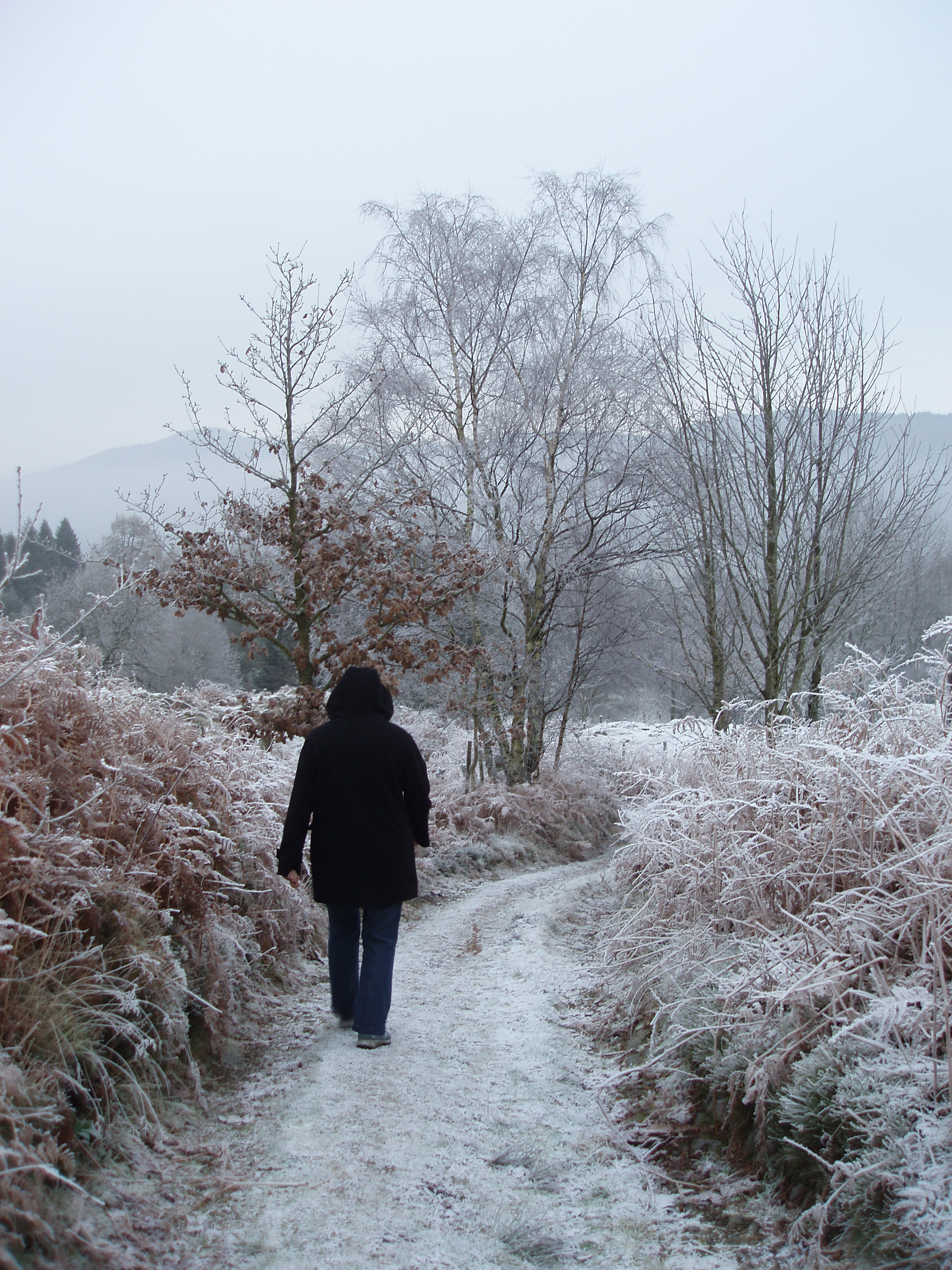 walking on a icy cold winter morning