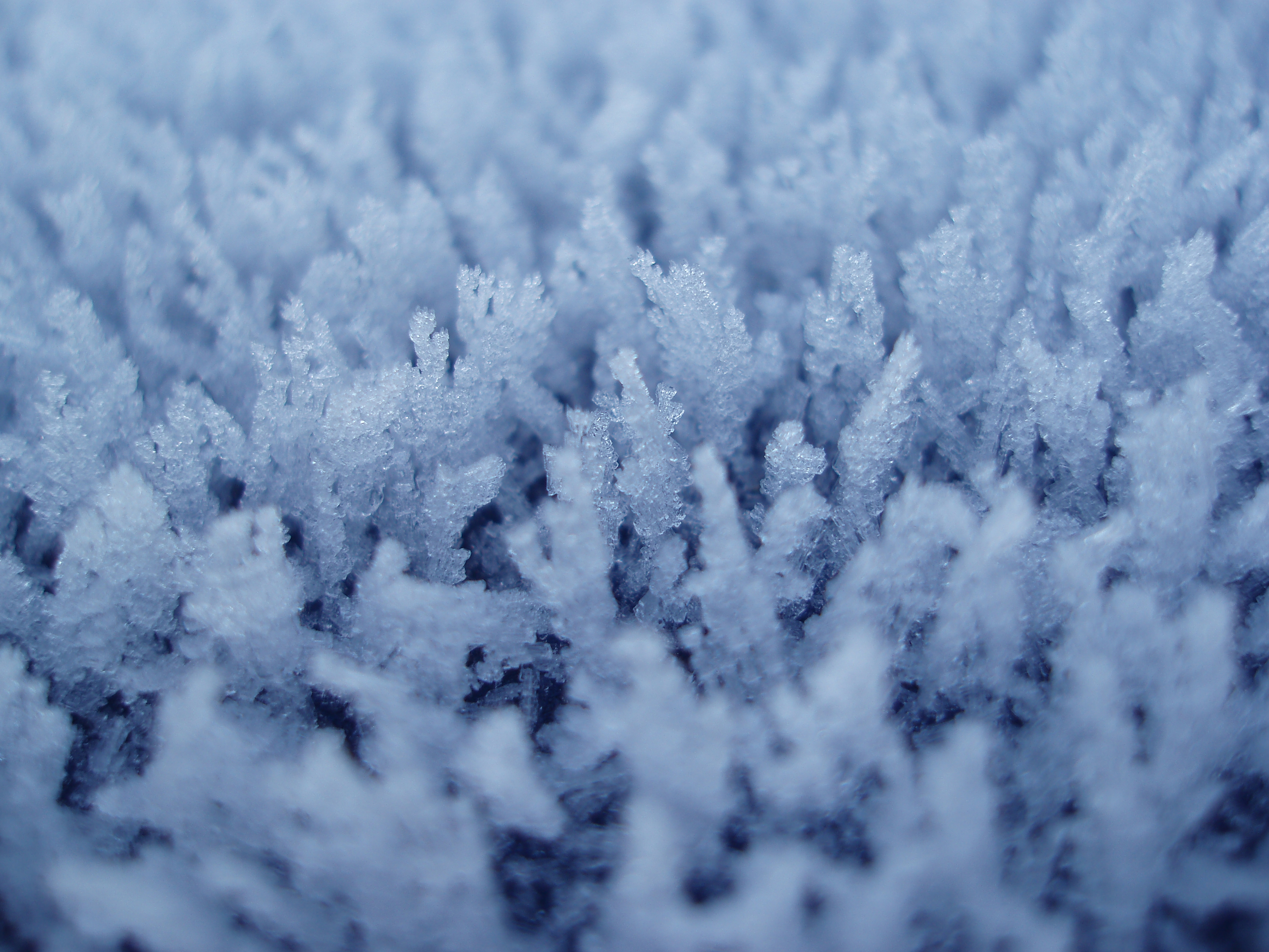 an array of tiny frost crystals with blue tint