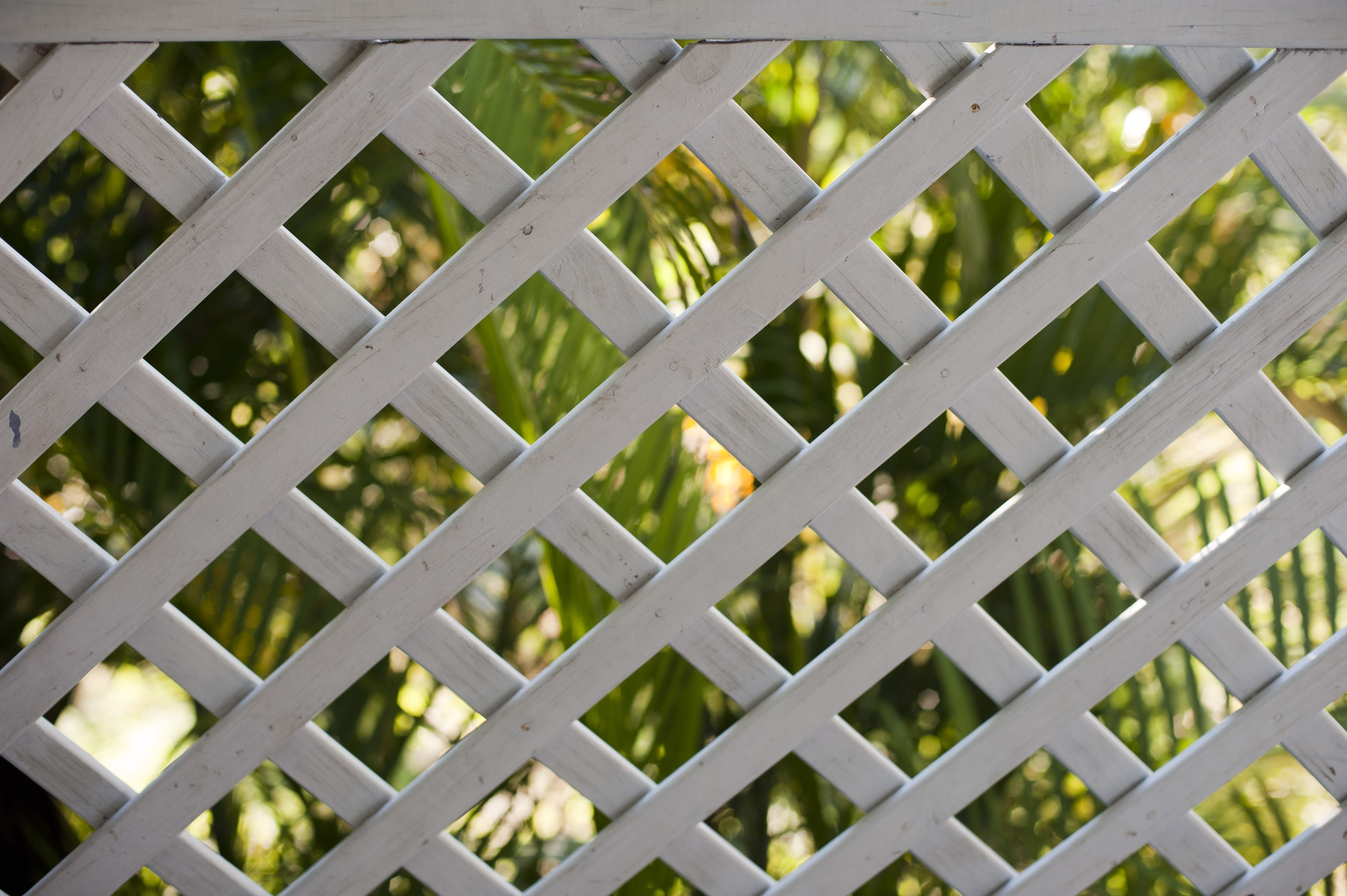 Background pattern of a wooden garden lattice or framework with a geometric diamond pattern